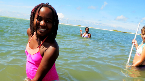 educational stem field trips florida 2016 2017