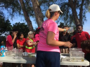 STEM-focused outdoor education south florida