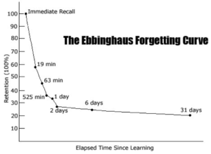 the ebbinghaus forgetting curve, experiential learning florida