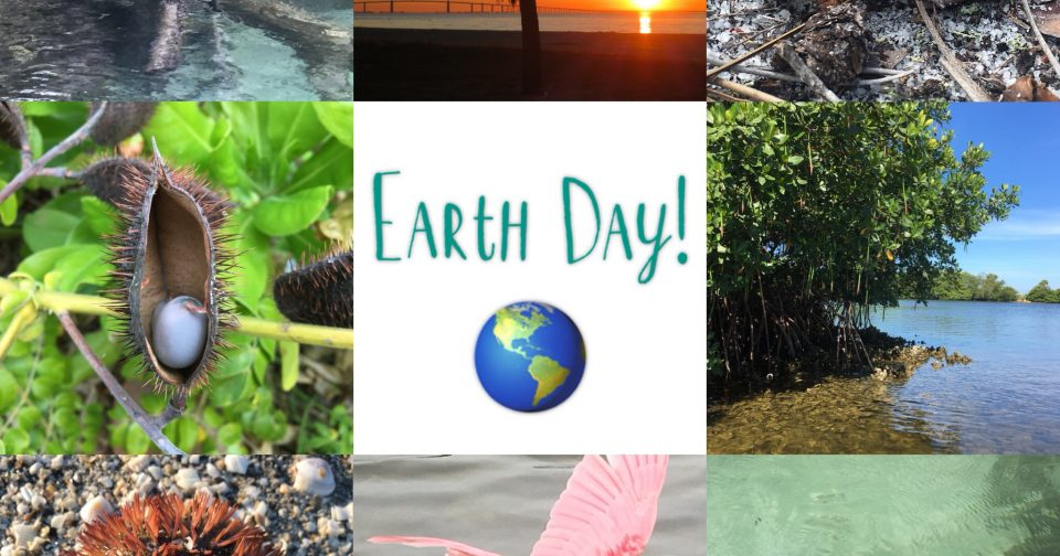 Earth Day 2018 with Nature's Academy
